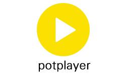 PotPlayer v1.7.17508 精简美化版