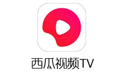 鲜时光TV(西瓜视频)来袭,大片、短视频海量资源